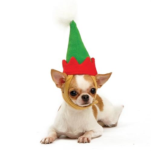 Dogo Elf Hat