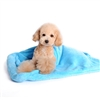 Blanket Bed Blue