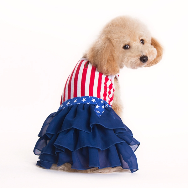 Dog Girl Dress