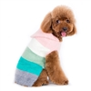 PP Color Stripes Hoodie Sweater
